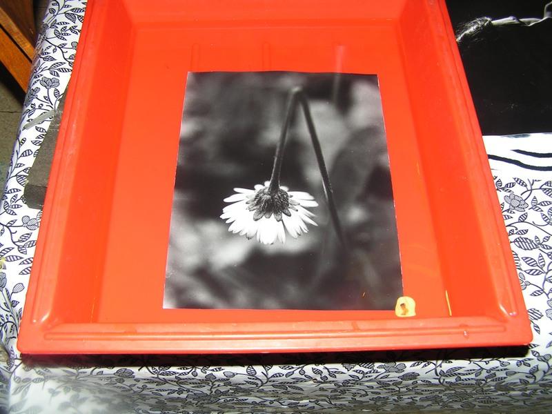 Obtenir des tirages papier baryté sans curling à la glaceuse